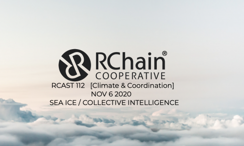 RCAST 112  Sea Ice / Collective Intelligence [Climate and Coordination] Nov 6 2020