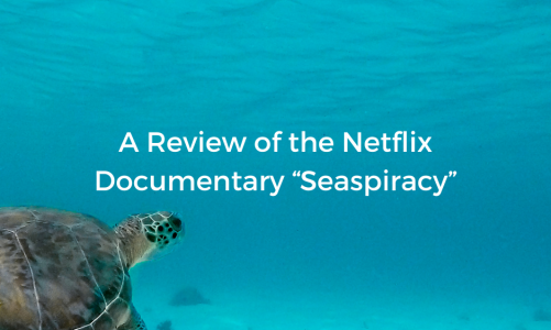"""A Review of the Netflix Documentary """"Seaspiracy"""" (Opinion)"""