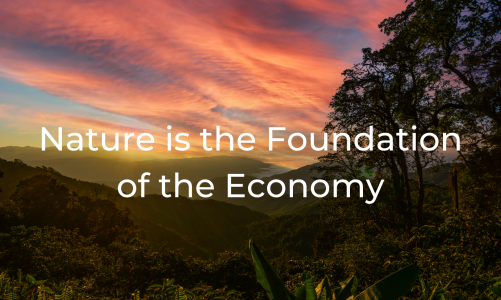 Nature is the Foundation of the Economy